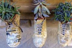 Handgjorda skor på skärm i Montepulciano Italien Arkivbilder