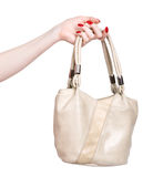 handhandväskakvinna royaltyfri foto