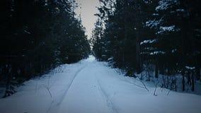 Handheld отснятый видеоматериал вспугнутой персоны бежать или избегая в лесе во время холодной ночи зимы сток-видео