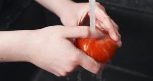 Handheld shot of female hands washing tomato Stock Images