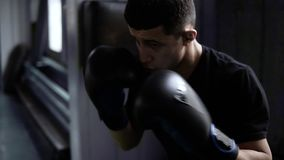 Handhelded footage of young boxer`s training. Dark haired man hitting the boxing bag, hard kicks. Motivation in sport. Old style gym, daytime. Close up stock footage