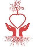 handhjärta rymmer treen Arkivbilder