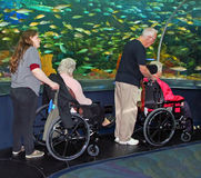 Handicap Accessible Stock Photo