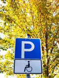 Handicapped  Royalty Free Stock Photos