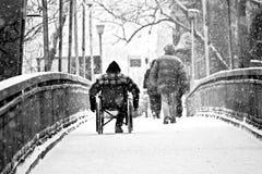 Handikapp - rörelsehindradt folk rullstolfotgängare Royaltyfria Bilder