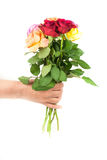 Handing flowers. Hand delivering flower isolated on white Stock Photography