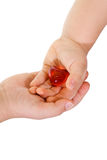 Handing over my heart Royalty Free Stock Photography