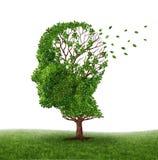 handla demens Arkivbild
