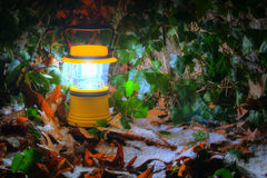 Handlantaarn met bevroren bladeren Stock Foto