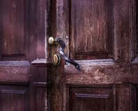 Handle door Stock Images
