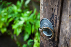 The handle on the old gate in the green garden and yard. Handle with a ring on the old gate in the garden and yard on green background Stock Photos