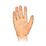 Handleineskizze Eine Hand Geöffnete Palme End- oder Willkommens-GE Stockbilder