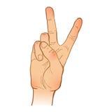 Handleineskizze Eine Hand Victory Gesture gemalter Arm Vecto Stockfotografie