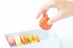 Handles macaroon in the box on white background. Handles macaroon in the box royalty free stock photography
