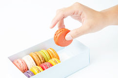 Handles macaroon in the box on white background. Handles a macaroon in the box on white background Stock Photos