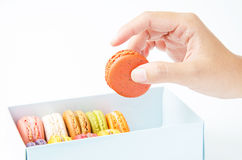 Handles macaroon in the box on white background. Handles a macaroon in the box on white background stock images