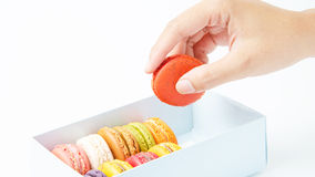 Handles macaroon in the box on white background. Handles a macaroon in the box on white background royalty free stock image
