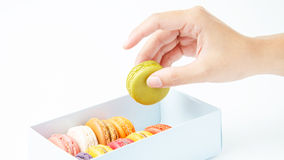 Handles a macaroon in the box on white background. Handles macaroon in the box on white background Royalty Free Stock Photos