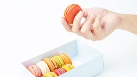 Handles macaroon in the box on white background. Handles a macaroon in the box on white background royalty free stock photography