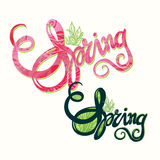 Handlettering spring inscription pattern Royalty Free Stock Photo