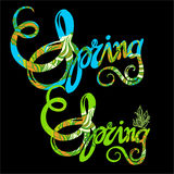 Handlettering spring inscription pattern Royalty Free Stock Photos