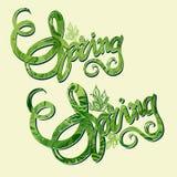 Handlettering spring inscription pattern Royalty Free Stock Photo