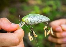 Handling a Fishing Bait with Worms. Worms hooked on Fishing bait hooks Royalty Free Stock Images