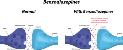 Handlingen av Benzodiazepines Arkivbild