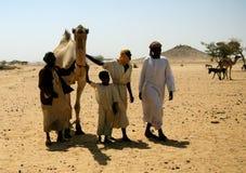 Handlować wielbłądy przy Omdurman rynkiem, Khartum, Sudan Obrazy Royalty Free
