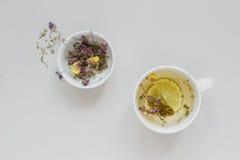 handluje porcelany świeżego porcelanowe truskawek herbatę razem Filiżanka gorąca ziołowa herbata i sucha herbata na szarym tle, o Obrazy Royalty Free