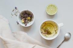 handluje porcelany świeżego porcelanowe truskawek herbatę razem Filiżanka gorąca ziołowa herbata i sucha herbata na szarym tle, o Zdjęcia Stock