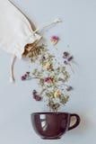 handluje porcelany świeżego porcelanowe truskawek herbatę razem Suszy ziołowej herbaty i filiżanki na szarym tle, odgórny widok Zdjęcia Stock