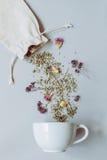 handluje porcelany świeżego porcelanowe truskawek herbatę razem Suszy ziołowej herbaty i filiżanki na szarym tle, odgórny widok Obraz Stock