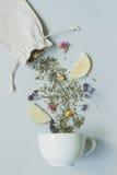 handluje porcelany świeżego porcelanowe truskawek herbatę razem Suszy ziołowej herbaty i filiżanki na szarym tle, odgórny widok Fotografia Royalty Free