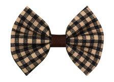 Handmade łęku krawat Obraz Royalty Free