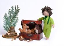 Handmade белки и мальчик забавляются Стоковое Изображение RF