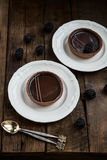 Handmade богатые Tartlets шоколада стоковое фото rf