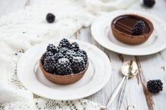 Handmade богатые Tartlets шоколада стоковые фото