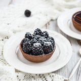 Handmade богатые Tartlets шоколада стоковая фотография