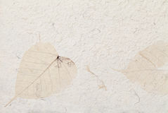 handmade бумага Стоковые Фото