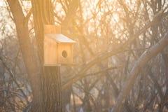 Handmade деревянный Birdhouse на старом дереве Деревянная птицы дома задняя часть дальше Стоковая Фотография