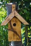 Handmade коробка птенеца пригвозженная на дереве в саде Стоковое фото RF