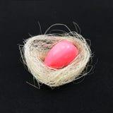 Handmade мыло в гнезде птицы Стоковая Фотография RF