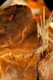 Handmade ломти хлеба стоковое фото rf