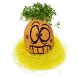 Handmade пасхальное яйцо в смешном, ужаснутый, устрашенный, удивленный Стоковое фото RF