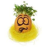 Handmade пасхальное яйцо в смешном, ужаснутый, устрашенный, удивленный Стоковые Изображения