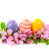 Handmade рамка пасхальных яя с цветками весны, стоковое фото rf