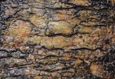 Handmade текстура предпосылки апельсина, желтого цвета и черноты Стоковое Фото