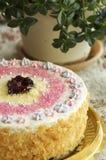Handmade торт лещины Стоковое фото RF
