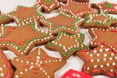 Handmade украшенные печенья имбиря стоковое фото